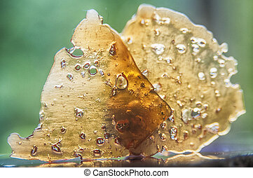 Pieces of cannabis oil concentrate aka shatter against green