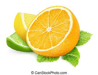 Pieces of citrus fruits