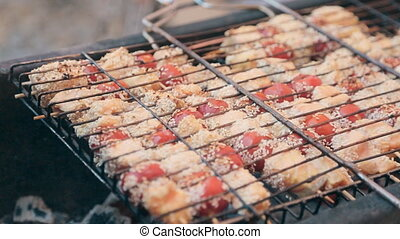 Pieces of fish and tomato on skewer roasting on a grill -...