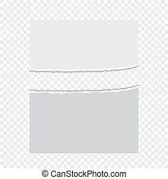 Pieces of torn paper on a transparent background. Vector illustration for your design.