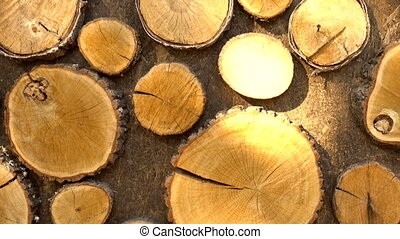Pieces of wood on wall - Round pieces of cut wood decorating...