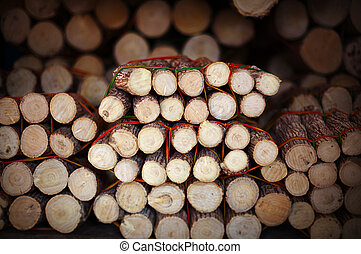 Pieces of wood with bark on market - material for thanaka production