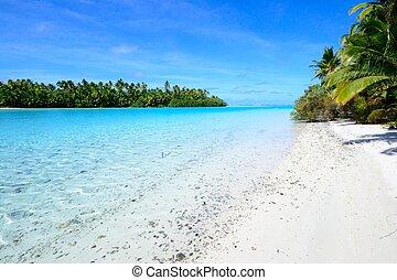 pied, île, aitutaki, lagune, une