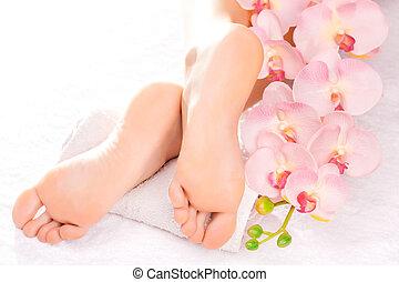 pied, spa, salon, masage