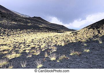 pied, volcan, herbe