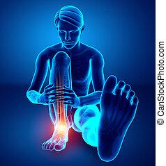 piede, caviglia, maschio, dolore