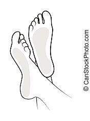 piede, illustrazione