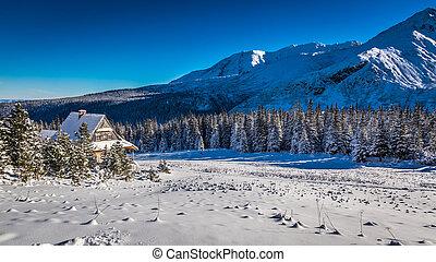 piede, montagne, piccolo, cottage, inverno