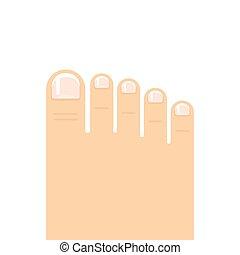 piede, vettore, illustrazione