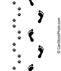 piedi, seamless, paws