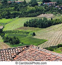 Piedmont wine province, Italy