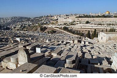 piedra, antiguo, viejo, aceitunas, judío, monte, cementerio,...