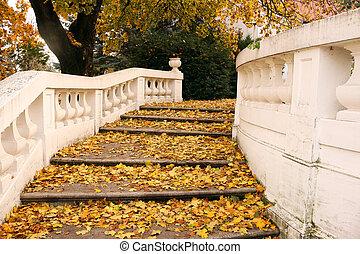 piedra, escalera, con, colorido, hojas caídas, otoño, estación