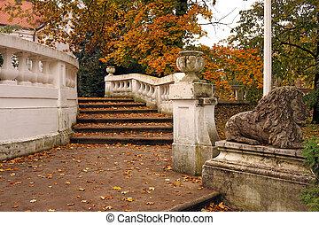 piedra, escalera, con, hojas caídas, en el estacionamiento, otoño, estación
