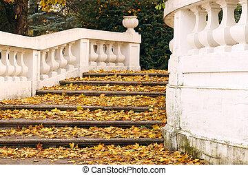 piedra, escalera, con, hojas caídas, otoño, estación