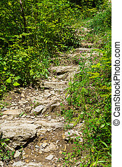 piedra, escalera, primero, arriba