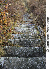 piedra, pasos, primero, arriba