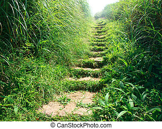 piedra, primero, arriba, pasos, claraboya, colina