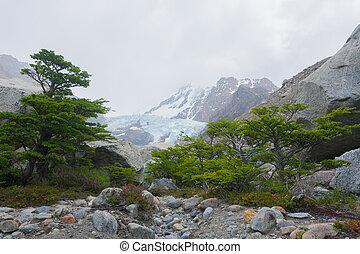 piedras, blancas, el, patagonia, glaciar, vista, chalten