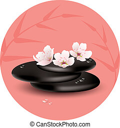 piedras, cereza, flores, vector, zen