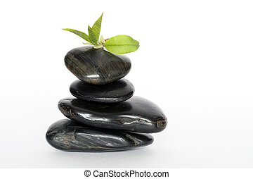 piedras, hojas verdes, el balancear
