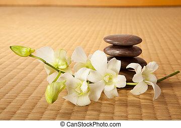 piedras, zen, orquídeas