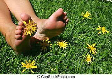 pieds, 3, herbe