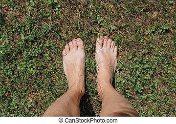 pieds, femme, nu, herbe