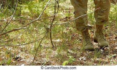 pieds, forêt, route, mens