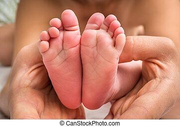 pieds, nouveau né, mains, bébé, mère