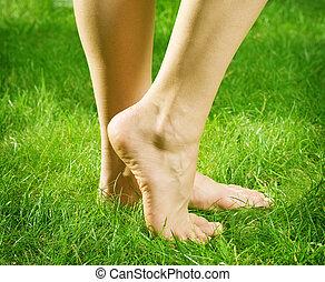 pieds, nu, femme, herbe verte