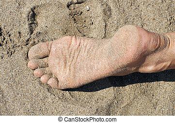 pieds, sable, femme