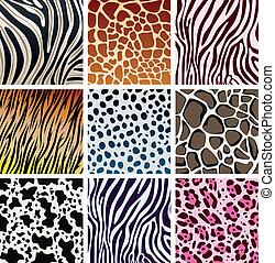 piel animal, texturas