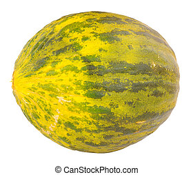Piel De Sapo Melon - Ripe whole Piel De Sapo mellon isolated...