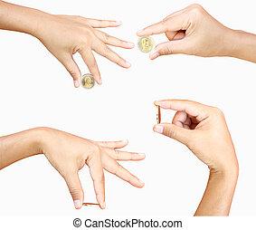pieniądz, samica, dzierżawa ręka
