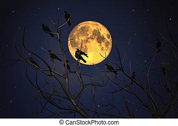 pieno, gruppo, seduta, contro, luna, corvi, ramo
