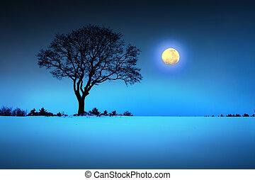 pieno, inverno, moon., albero, nero, paesaggio