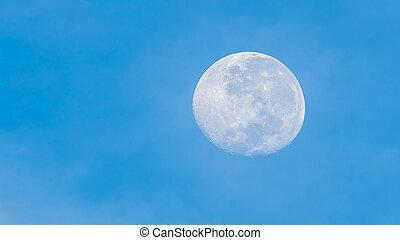 pieno, morning., luna