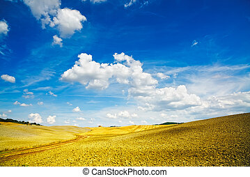 pienza., orcia, włochy, d, val, tuscany, wiejski, siena, ...