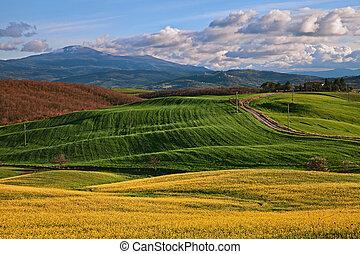 Pienza, Siena, Tuscany, Italy: landscape of the countryside...