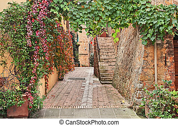Pienza, Siena, Tuscany, Italy: picturesque alley in the old town