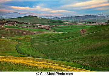 Pienza, Siena, Tuscany, Italy: spring landscape of the Val d...