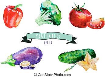 pieprz, eggpl, set., warzywa, akwarela, pomidor, wektor, ogórek