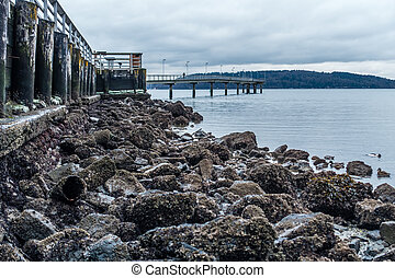 Pier At Low Tide 2