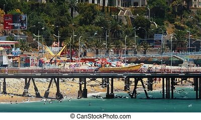 Pier At Playa Caleta Portales With Thousands Of Seagulls And...