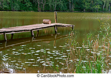 pier for fishing, marshland, reflection of trees in the pond, a picturesque pond in the forest