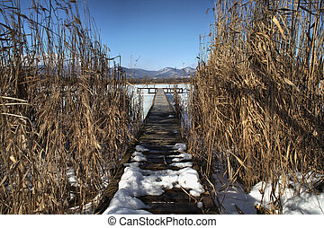 Pier in the reed