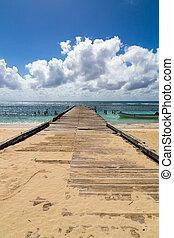 Pier into the ocean Saona Domenican Republic