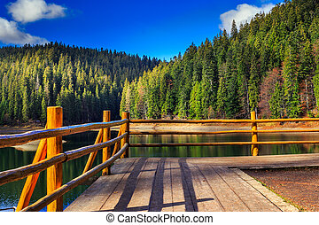 pier on mountain Lake near  forest
