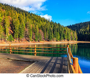 pier on mountain Lake near forest - pier with fence on the...